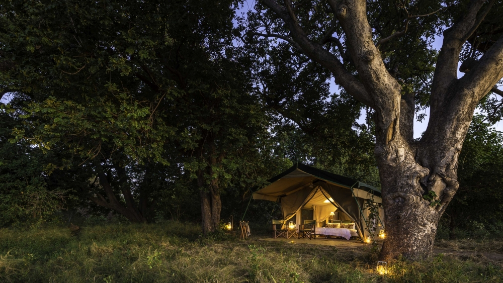 Tent at John's Camp